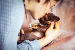 Svojemu-psu-izberite-pravo-ime-Foto-Anja-Troha
