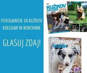 glasovanje-za-kuzkov-koledar-in-rokovnik-2
