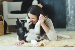 kaj-v-resnici-pomenijo-pasji-poljubcki