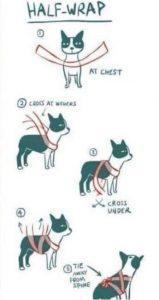 zakaj-se-psi-bojijo-pokanja-petard-2
