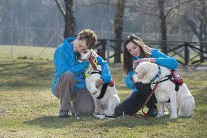 dobrobit-psov-pomocnikov