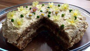 pomladna-tortica-za-pse-1