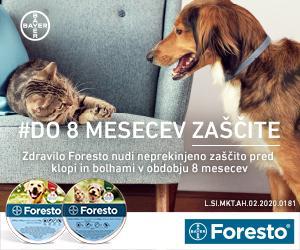 Foresto